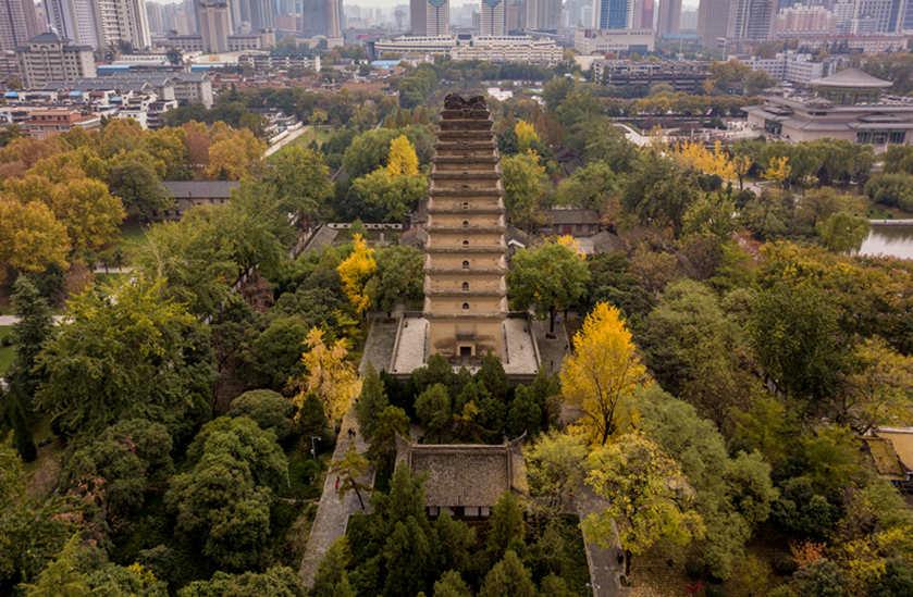 Pagoda della Piccola Oca Selvatica in autunno